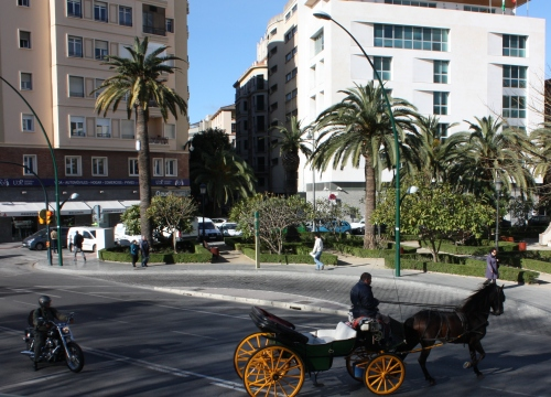 Horse and buggy in Málaga