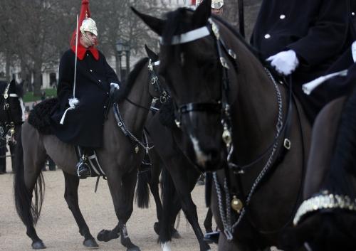 Horse Guard Change