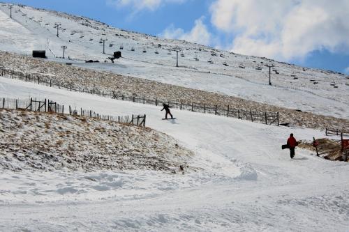 Snow Boarder