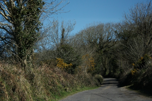 Road to Horseback Riding, Bantry, County Cork