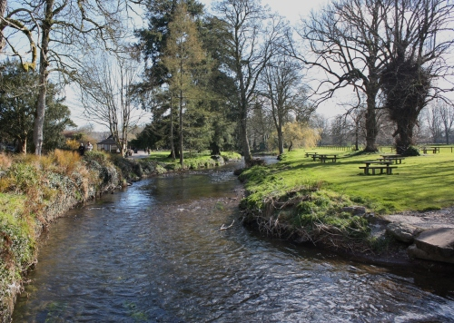 Stream flowing through the grounds of Blarney Castle