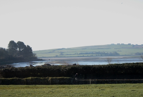 View of Clonakilty Bay from B&B