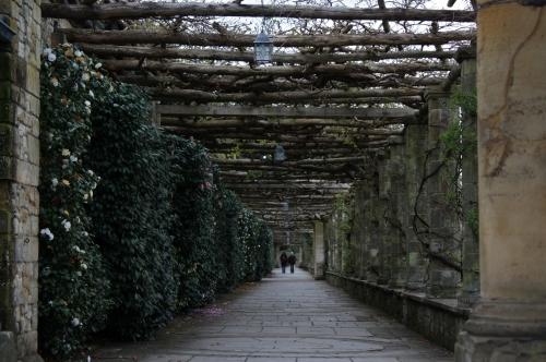 Hever Castle Garden Walkway