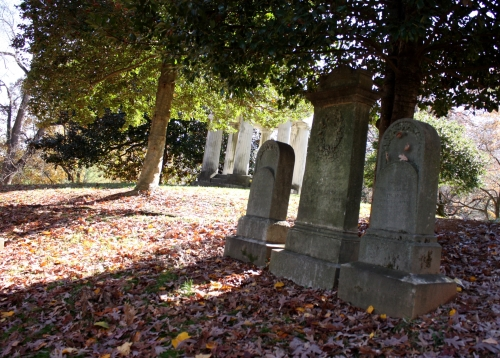 The fallen leaves throughout the Garden cemetery