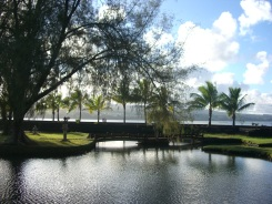 Pond at Liliokalani Park