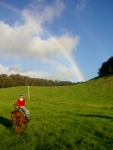 Rainbow Ride