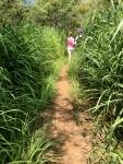 Kealakekua Bay Trail Patti walking in the tallgrass