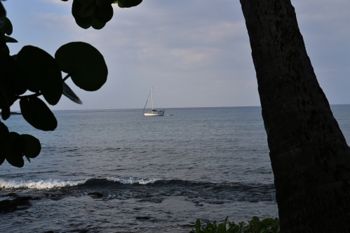 Kona sailboat on the waters