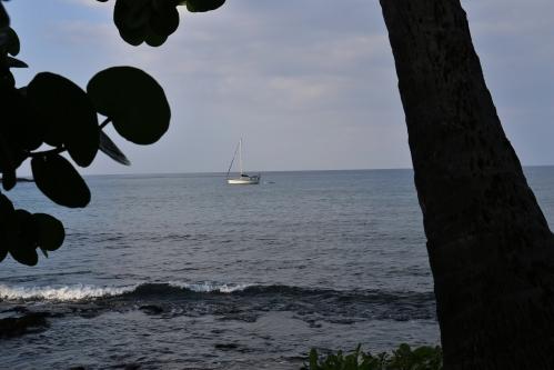 Kona sailboat on the waters