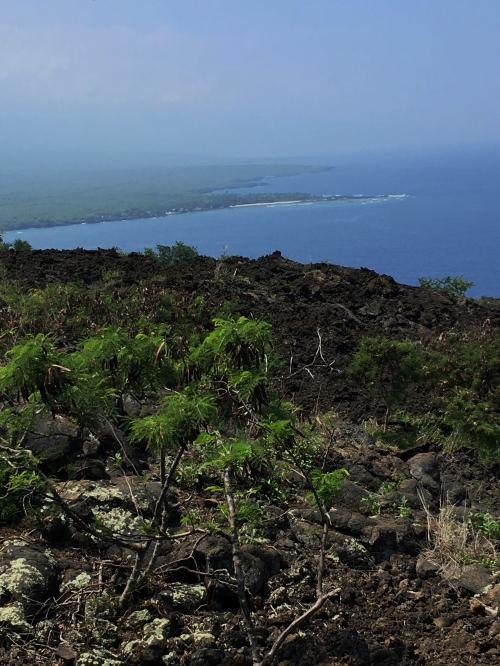 WP Kealakekua Bay Trail view to south side of island