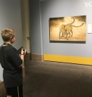 """Youth Photographer viewing """"Youth Photographer"""" winners at the Museum of Natural History"""