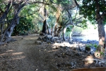 Mau'umae hike from Spencer ParkBeach