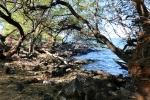 Mau'umae hike Logan in the backgroundIII
