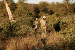 Cabinet and Shadrack checking on Leopard tracks